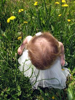 toddler girl in meadow looking at flowers